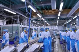selecting the proper conveyor belt for your conveyor sparks belting