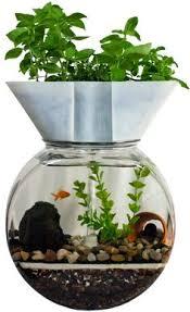 aquaponics system fish tank aquarium planter grow light indoor