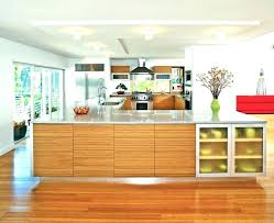 bamboo cabinets home depot bamboo cabinet door bamboo cabinet hardware types stylish miraculous