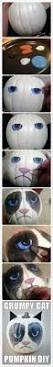 Diy Crafts Halloween by Best 25 Grumpy Cat Costume Ideas Only On Pinterest Grumpy Cat