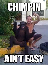 Chimp Meme - chimpin ain t easy funny monkey meme image