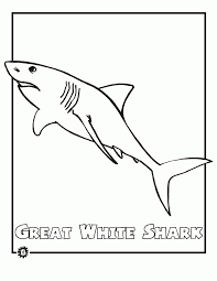 white shark coloring pages backgrounds coloring white