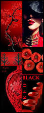 Black And Red Flag Country Best 25 Red Color Combinations Ideas On Pinterest Winter Colors