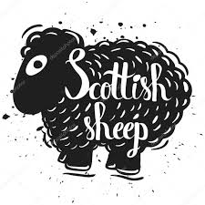 hand drawn lettering typography poster the silhouette of a sheep