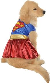Halloween Costumes Supergirl 25 Superman U0026 Supergirl Costumes Images