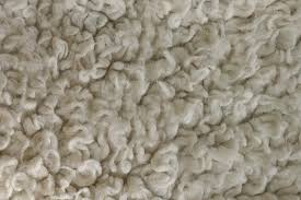 Short Shag Carpet by How To Revive Matted Carpet All Kleen Carpet Cleaning