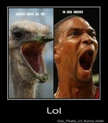 Chris Bosh Memes - chris bosh comparison meme by rmnumber1 memedroid