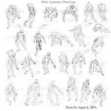 fresh drawing human anatomy 42 for what are the parts of the