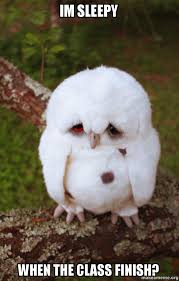 Im Sleepy Meme - im sleepy when the class finish sad owl make a meme