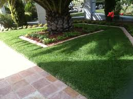 landscaping northern beaches turf u2013 north shore and northern beaches landscaping 0415 830 667