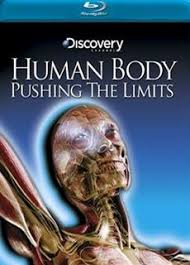 Online Human Body 105 Best Human Body Anatomy Images On Pinterest Human Anatomy