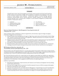 resume for internal promotion auditor sample q staff s peppapp