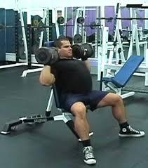 Great Shoulder - best shoulder workout the top 5 shoulder exercises