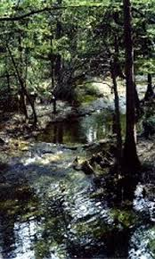 Cypress Creek Cottages Wimberley by Homestead Cottages On Cypress Creek Wimberley Tx Innsite Com