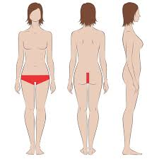brazilian hair removal pics female brazilian extended laser hair removal indy laser