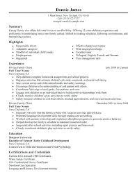 sample of resume profile delightful decoration example resumes