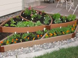 outdoor and patio green backyard vegetable garden mixed with