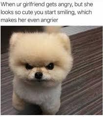 Cute Meme - dopl3r com memes when ur girlfriend gets angry but she looks
