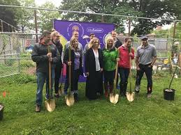 clean air project plants fruit trees in bronx garden ny daily news