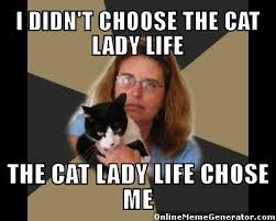 Cat Meme Ladies - crazy cat lady memes pinteres