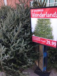 christmas trees on sale kroger christmas trees for sale kroger coupon