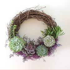 special occasion succulent wreath succulents