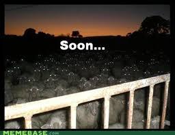 Soon Horse Meme - soon