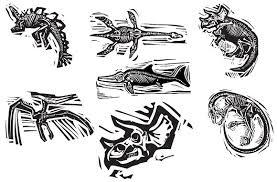 woodcut dinosaur fossils illustrations creative market