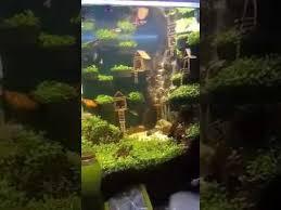 Dramatic Aquascapes Aquascape It U0027s Amazing Youtube