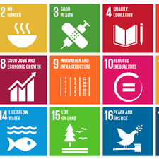 organized crime asd2030 organised crime and the sustainable development goals