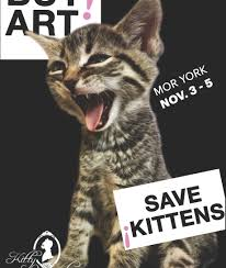 buy art save kittens discover los angeles california