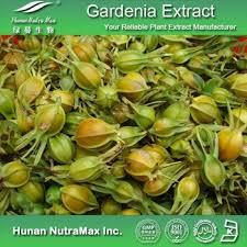 natural food coloring gardenia yellow gardenia blue powder buy
