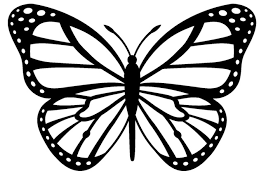 simple butterfly black and white free clip free