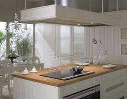cuisine avec plan de travail en bois quel bois pour plan de travail cuisine mood de bois moderne