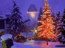 safe holiday decorating green christmas tree lights twitter