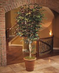 8 trim artificial capensia tree with wood trunks at petals