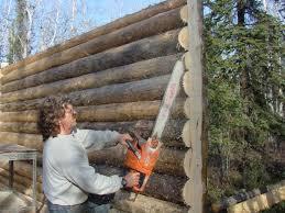 cabin building workshop education alaska trappers association