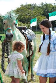 208 best the wizard of oz images on pinterest wizards dr oz