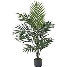 16 best silk trees images on artificial plants