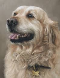 best 25 pastel portraits ideas on pinterest love drawings for