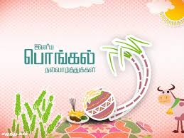Pongal Invitation Cards Pongal Status For Facebook 2017 Happy Pongal Fb Dp Facebook