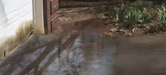 Backyard Water Drainage Problems Fix Standing Water In Your Driveway