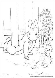 Peter Rabbit Coloring Pages Educational Fun Kids Coloring Pages Rabbit Colouring Page