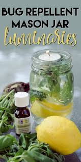 get rid of mosquitoes with this non toxic diy mason jar