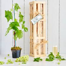 New Home Gift by Personalised Grapevine New Home Gift By The Gluttonous Gardener