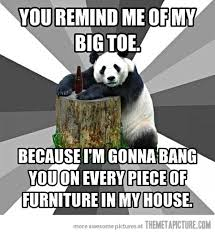 Pick Up Line Panda Meme - bad pickup line panda the meta picture