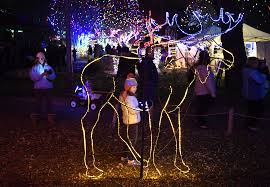 unique christmas lights for sale parade of lights zoo lights christmas lights holiday displays