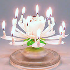 musical birthday candle amazing musical flower birthday candle 5 95 lotus soccer