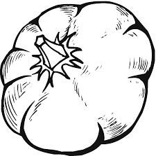 pumpkin coloring pages 3 coloring pages to print