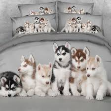online buy wholesale boy dog beds from china boy dog beds